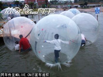 Waterwalking_ball